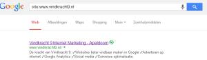 site zoeken in google